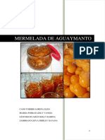 Aguaymanto Final