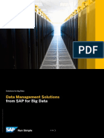 Data Management Solutions From SAP for Big Data