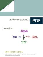 AMINOÃCIDOS-ESENCIALES-1