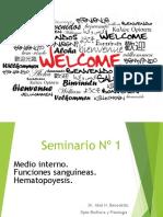 Seminario Nº1 2017.ppt