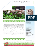 Mushrooms 0614