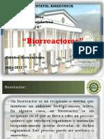 Gissella Vera - Biorreactores