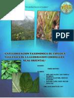 grupo17.pdf