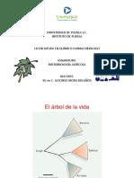 Microbiología Agricola (1).pptx