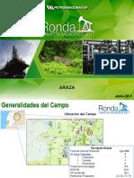 ARAZA.pdf