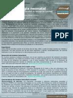 2. Neonatal Immunology (Inmunología neonatal)