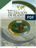 4 R DE LA NUTRICIÓN planta.pdf
