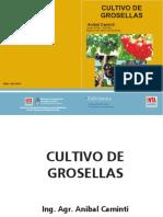 Manual Grosella1