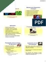 5- pdf Métodos Diagn Molec em Virologia - Andréa.pdf