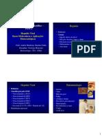 2-DEF 1 RED  Hepatite Viral Biotecnologia.pdf