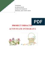 0_proiect_inspectie_finala_gradul_i.docx