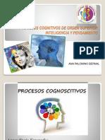 161258465 1 Procesos Cognitivos