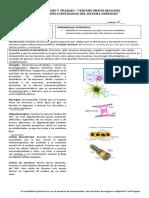 Guia Neuronas y Neuroglias. (1)