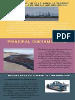 La Contaminación de la bahia