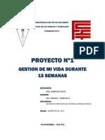 Proyecto Nº1- Noel Quinteros Teran