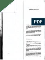 Teoria Hechizo Perrone.pdf