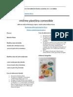 Informe Plastilina Comestible