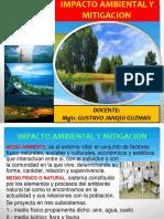 IMPACTO AMBIENTAL Y MITIGACION2.pptx