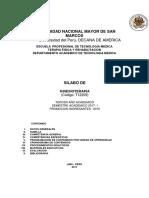 silabus KINESIOTERAPIA.pdf
