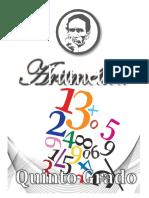 294524768-5-Grado-Primaria (1).pdf