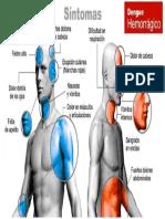 clases de dengue imprimir.docx