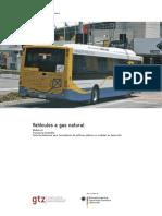 Vehiculos a Gas Natural Gtz