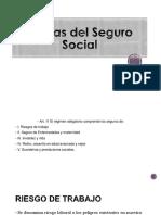 Ramas Del Seguro Social