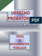 T-13. Documentos Publicos