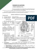 APRATO REPRODUCTOR 1 ANATOMIA.doc