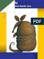 Primaria Tercer Grado Puebla La Entidad Donde Vivo Libro de Texto