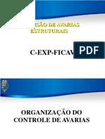 1 Organização Do Cav