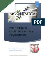 Practica Nº 09 Perfil-lipidico