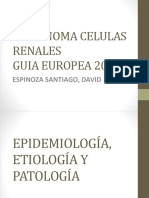 CARCINOMA CELULAS RENALES 2017.pptx