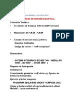 Formato Plan Para El Desarrollo de La Materia Seg Industrial