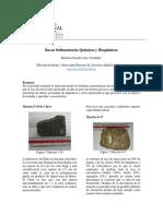 INFORME Rocas Químicas y Bioquímicas