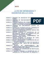 MODELOS CIVILES Y FAMILIA.doc