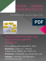 Exposicion Laboral a Agentes Biologicos (1)