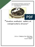Analiza Mediului Extern Al Intreprinderii Cricova.conspecte.md
