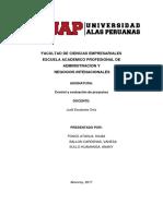 Flujo de Caja Monografia (1)