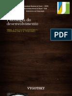 Psicologia Do Desenvolvimento 5
