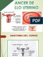 Cancer de Cuello Uterino Alumnos