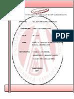 DISEÑO Y PERFILES DE PUESTOShh (1) (1).pdf