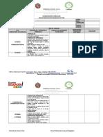 1. Formato - Flexibilidad Curricular Lenguaje - Rocio