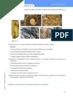 7ano - Fósseis + tempo geológico.docx