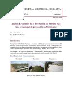 Inta Hd41 Analisis Economico Frutilla