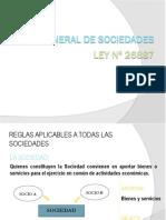 Resumen LGS Ley 26887