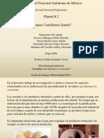 Elavoracion del Pan.pdf