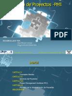 Exposicion Gerencia de Proyectos Pmi 100515094728 Phpapp02