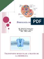 Fisiología General II.pptx