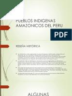 Pueblos Indigenas Amazonicos Del Peru